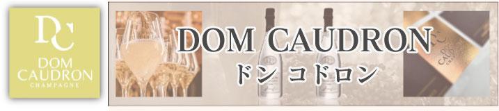 DOM CAUDRON(ドン・コドロン)シャンパンは、ヴァレ・ド・ラ・マルヌのパッシー・グリニーで生産されたムニエ品種100%のシャンパーニュです。伝統的な醸造製法で熟成されたパッシー・グリニーを代表するシャンパーニュです。